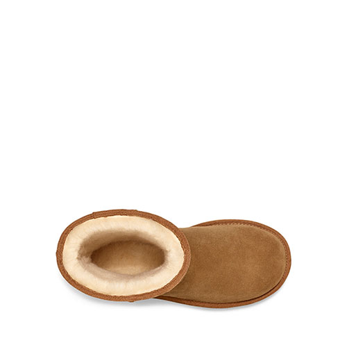 Classic Short UGG Rubber Logo CHE